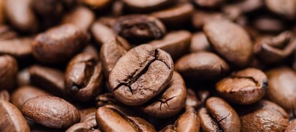 caffettiera pulcina